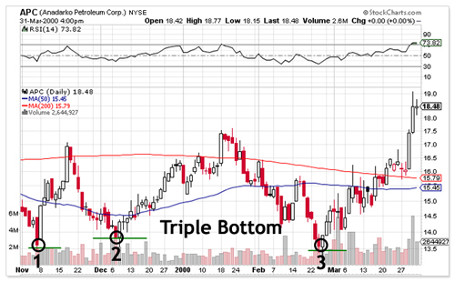 Triple Bottom Chart